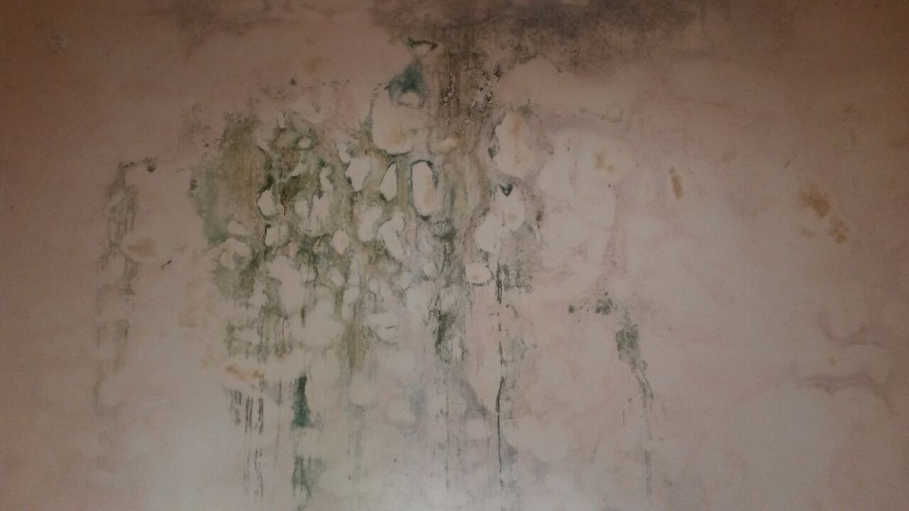 Como reparar humedad en paredes yoreparo - Humedad en pared ...